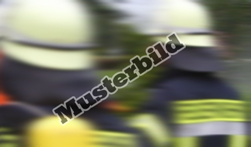 images/musterl.png